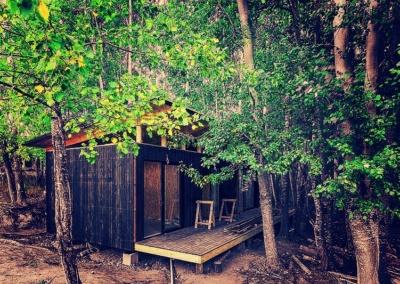 forest chalet build